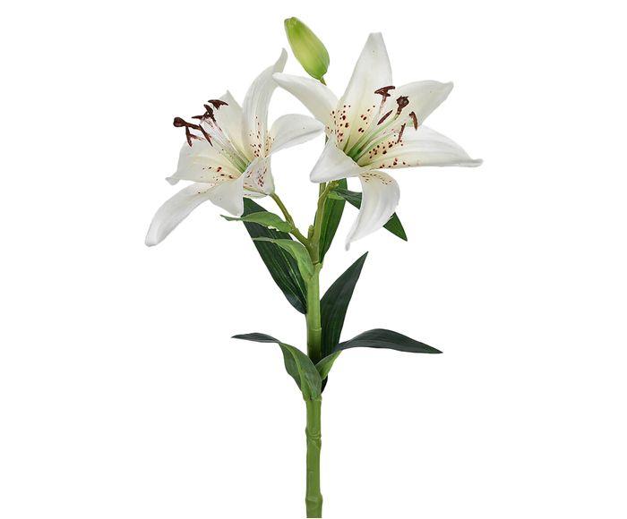 Planta Permanente Lírio Creme - 14 X 60cm | Westwing.com.br