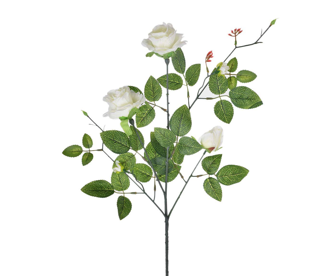 Planta Permanente Roseira Creme - 7X80cm | Westwing.com.br