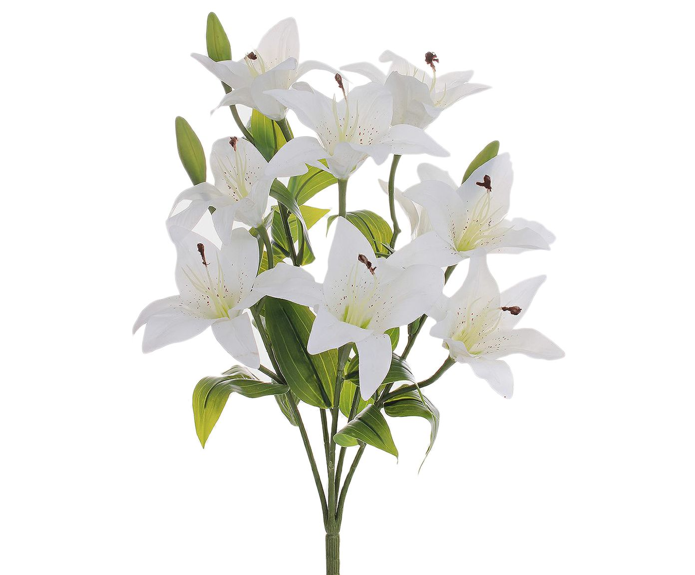 Planta Permanente Lírio Real Branco - 13X50cm | Westwing.com.br