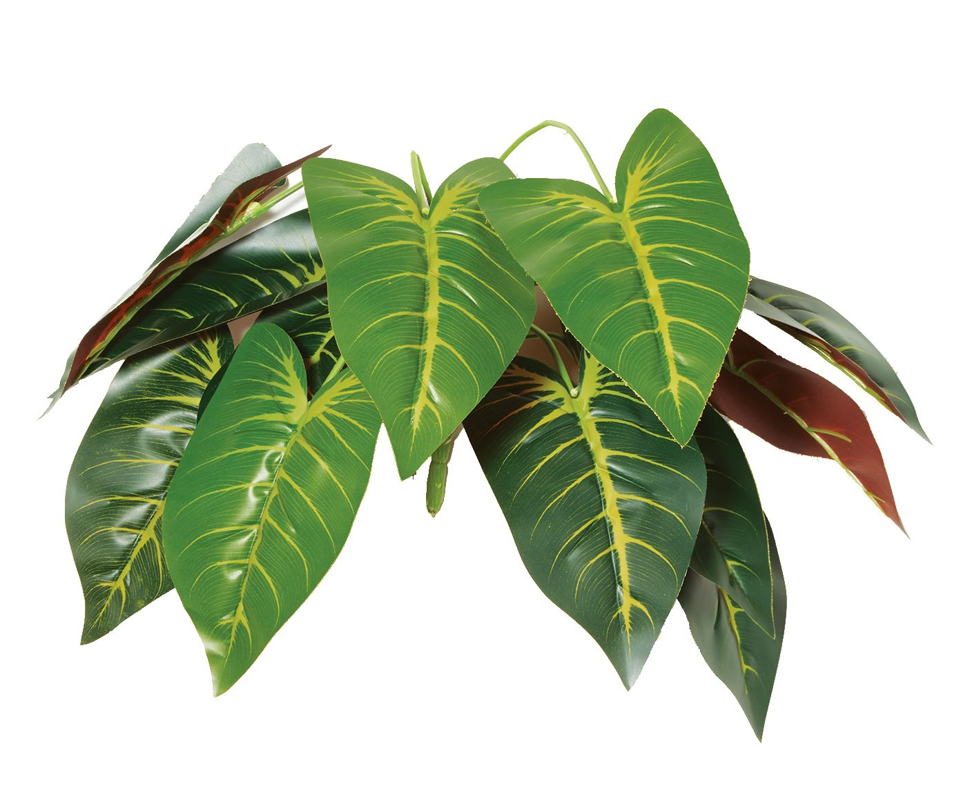 Planta Permanente Ranzinza - 38cm | Westwing.com.br