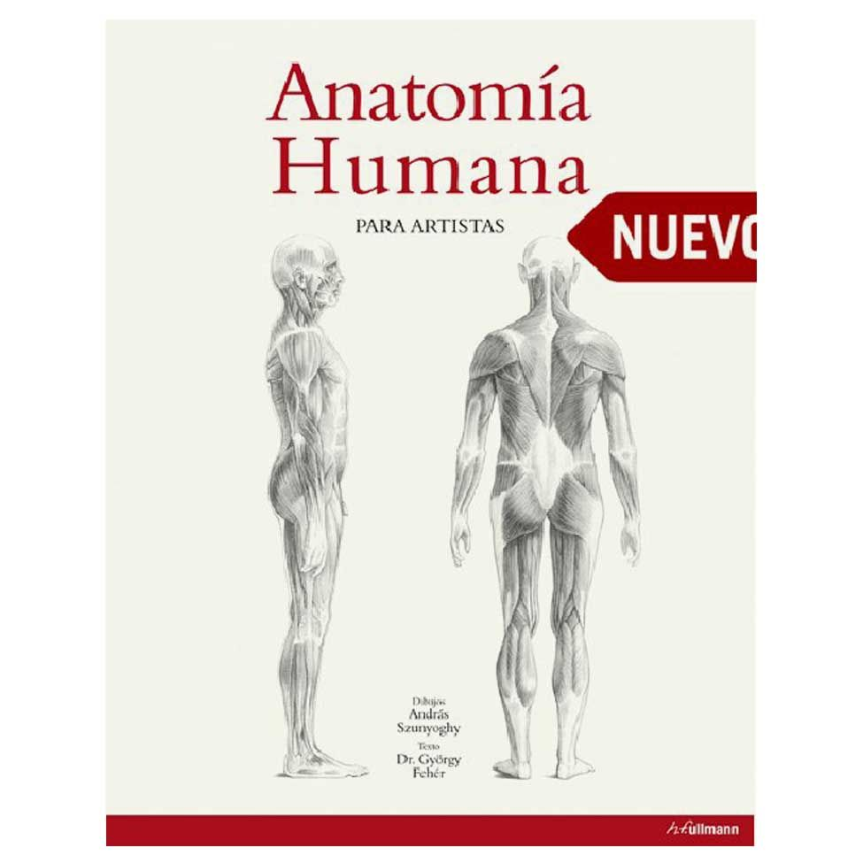 Anatomía humana para artistas | Westwing.com.br