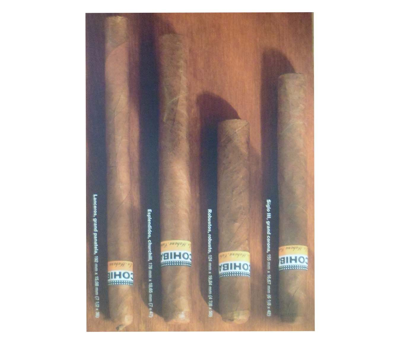 Gravura cohiba - 20x30cm | Westwing.com.br